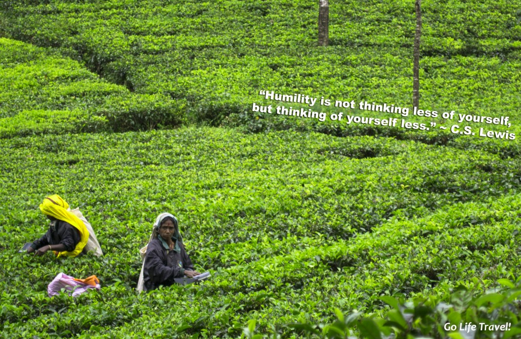 Sri Lanka: Humility Down to a Tea Leaf